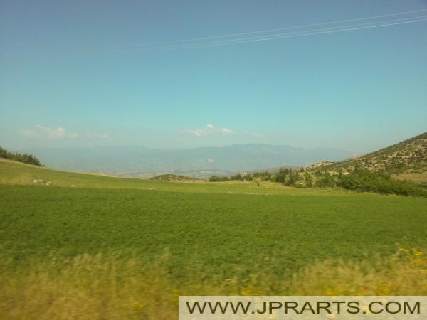 阿尔巴尼亚绿色的田野