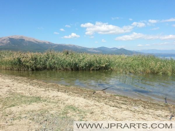 Die Natur von Prespasee (Mazedonien)
