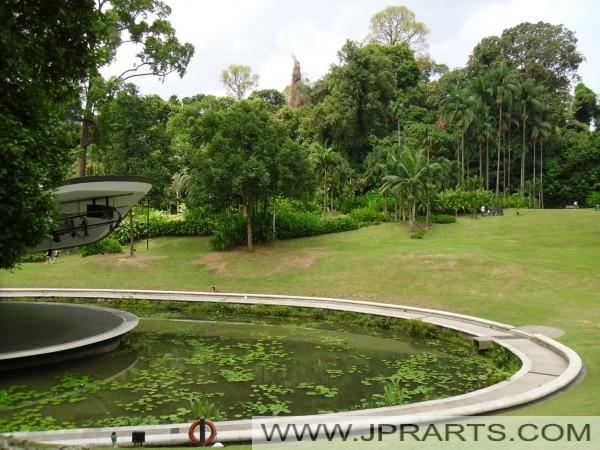 Сингапур Ботанический сад