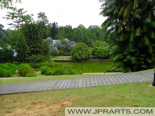 Symphony Lake Singapore Botanic Garden