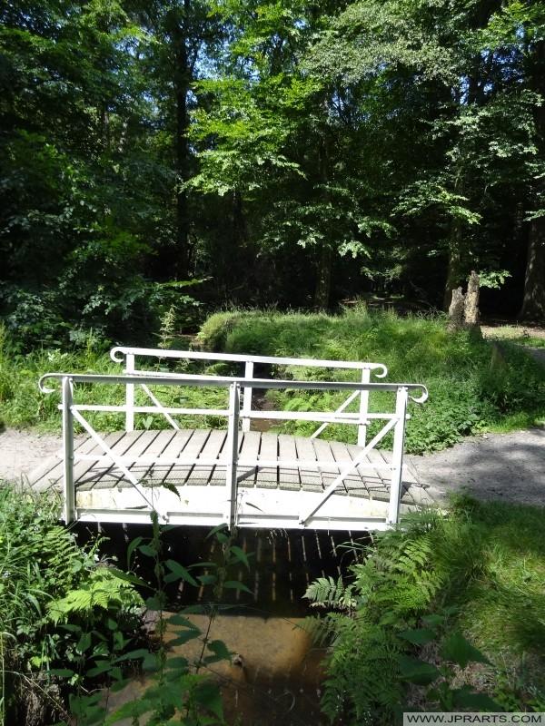 petit pont blanc dans les Asserbos (Assen, Pays-Bas)