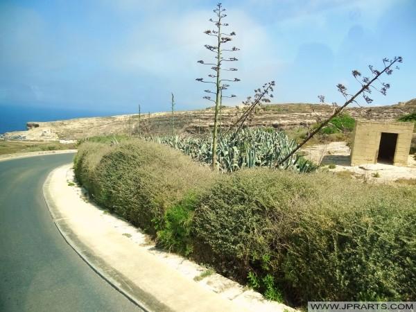 Straße nach Dwejra (Gozo, Malta)