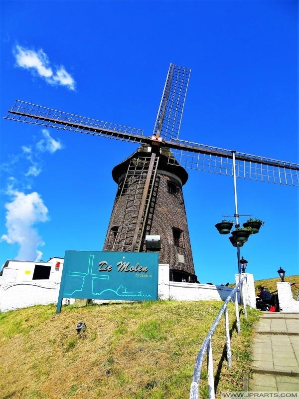 17. Jahrhundert Windmühle auf der Scheldedijk in Doel, Belgien