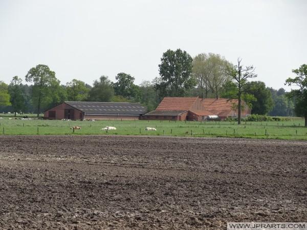 Azienda agricola in provincia di Anversa, in Belgio
