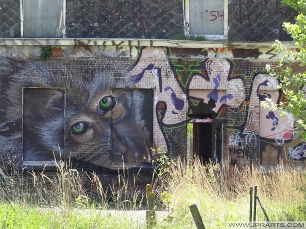 Graffiti de un mono en Doel, Bélgica