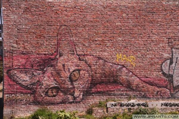 Katze Graffiti