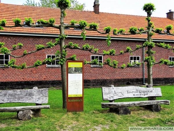 Kempen krajolik Wortel kolonija (Belgija)