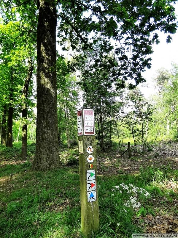 Sentiers pédestres en belgique