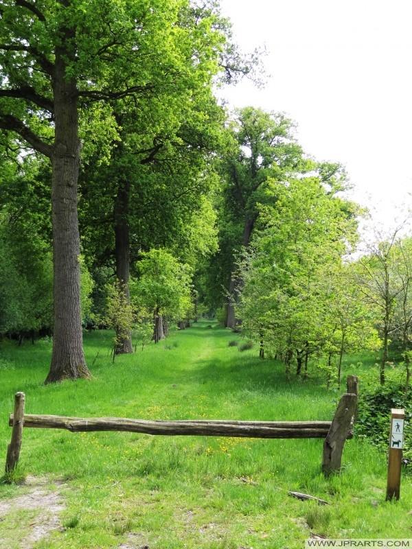 Sentiero in 't Merkske (belga - confine olandese)