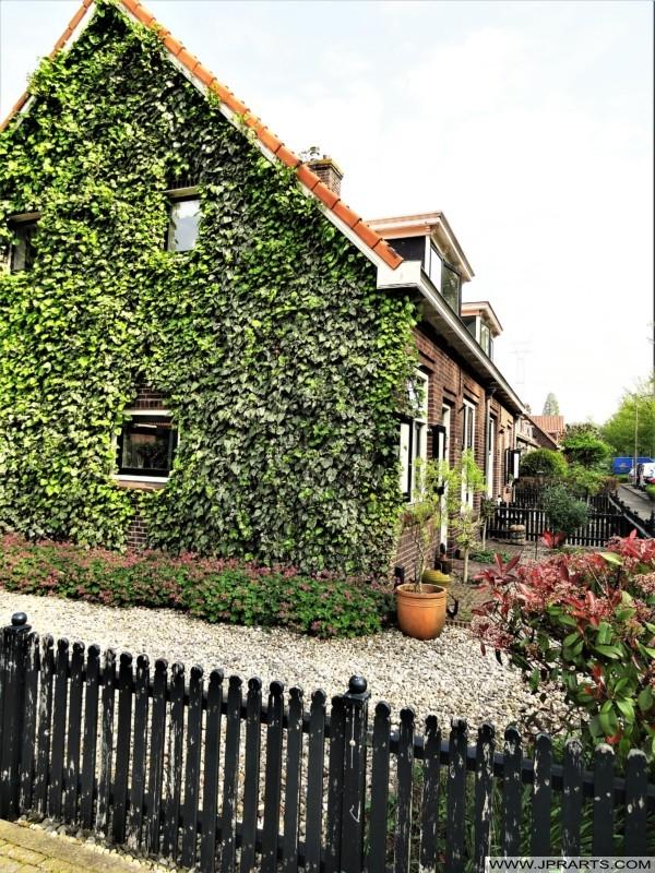 Donckselaan in Bolnes (Ridderkerk, Nederland)